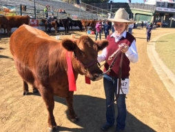 Ekka Success